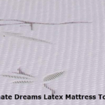 Ultimate Dreams Queen 3 inch thickTalalay Latex Firm Mattress Topper Dreamfoam Bedding