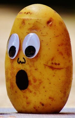 Potato head is shocked that the keto diet is not working.